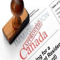 Immigration & Refugee
